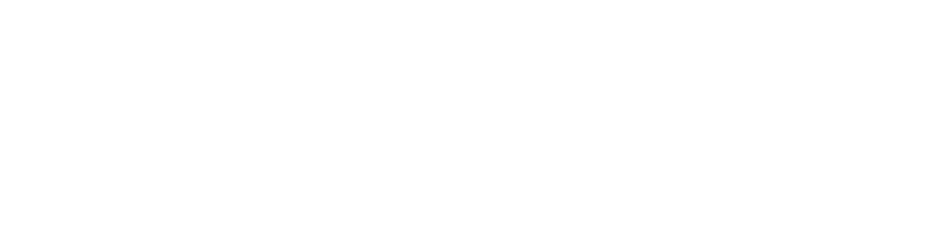 Think Cyber Solutions Logo